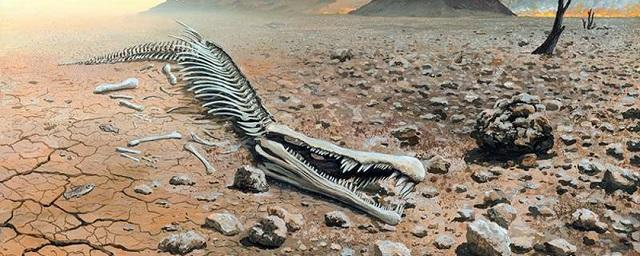 Scientists have named the reason for the most massive extinction of animals in the history of the planet