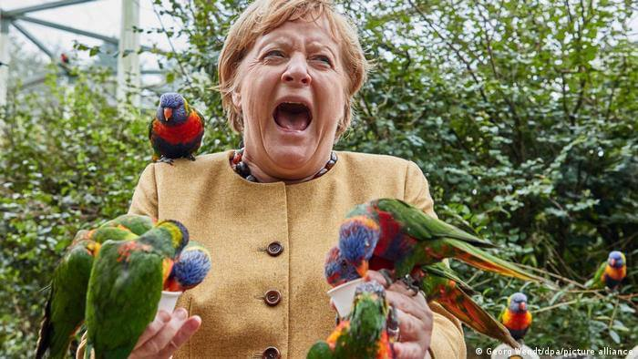 Such a Merkel has not yet been seen: a photo was shown on the web of how the German Chancellor feeds parrots